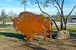 An outdoor sculpture depicts a buffalo once roamed the land