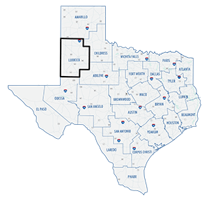 Lubbock District County Map