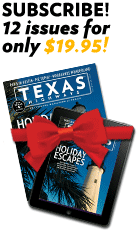 Subscribe to 12 issues for only $19.95!