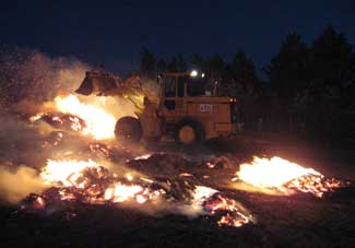 TxDOT Crews Helped Battle West Texas Wildfires